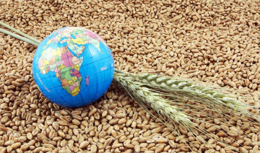 Экспорт продукции АПК вырос на 17% и составил 160 млн долларов